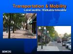 transportation mobility local audits walkable bikeable