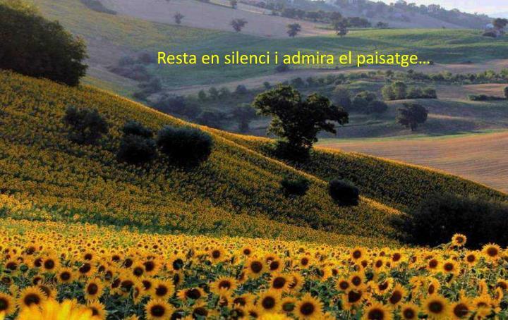 Resta en silenci i admira el paisatge…