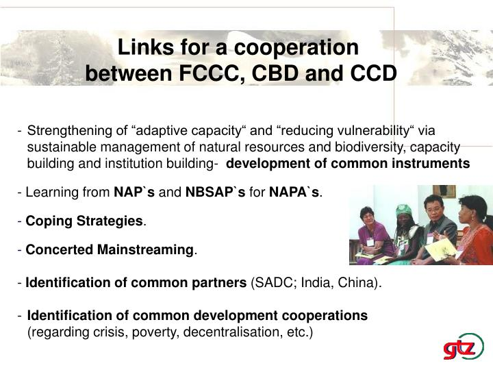 Links for a cooperation
