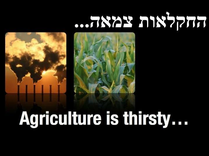 החקלאות צמאה...