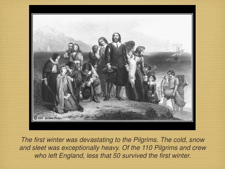 The first winter was devastating to the Pilgrims. The cold, snow and sleet was exceptionally heavy. Of the 110 Pilgrims and crew who left England, less that 50 survived the first winter.