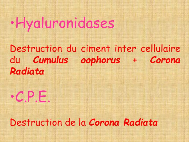 Hyaluronidases