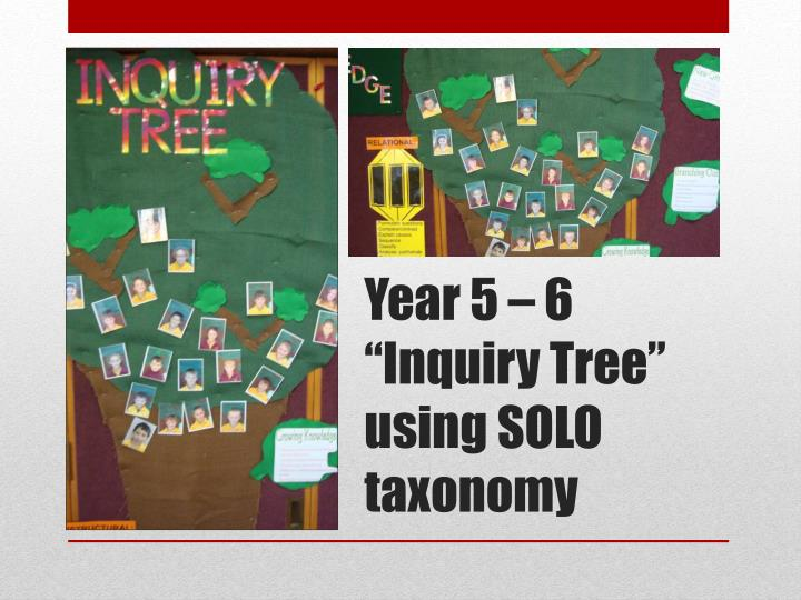 "Year 5 – 6 ""Inquiry Tree"" using SOLO taxonomy"
