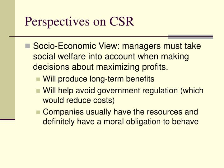 Perspectives on CSR