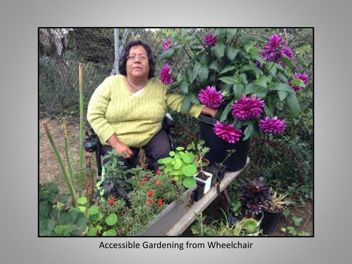 Accessible Gardening from Wheelchair