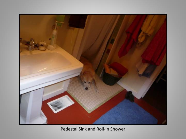 Pedestal Sink and Roll-In Shower
