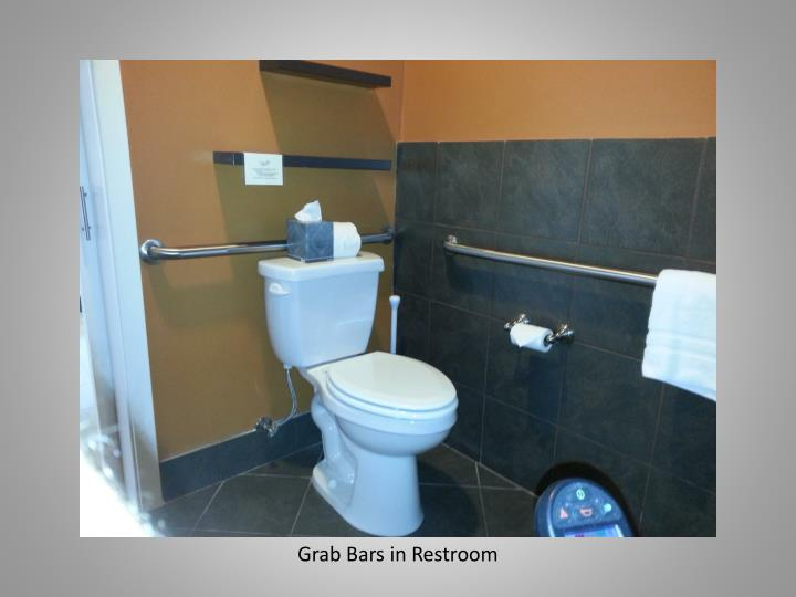 Grab Bars in Restroom