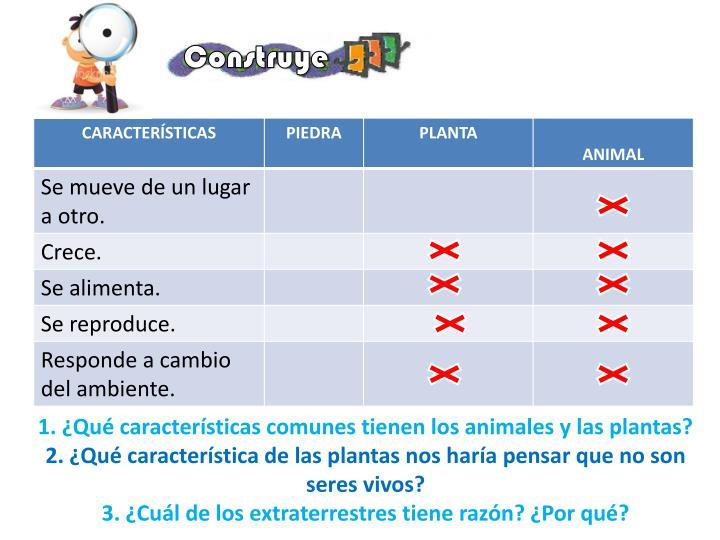 1. ¿Qué características comunes tienen los animales y las plantas?