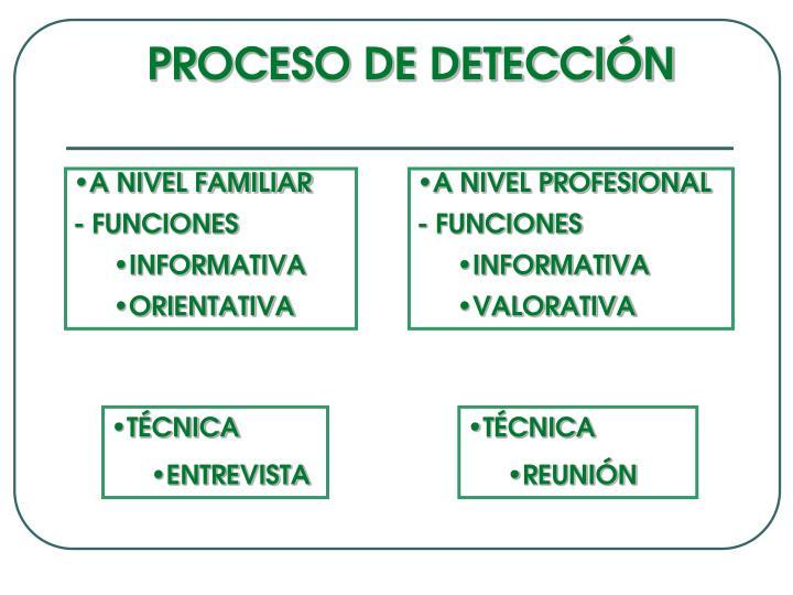 PROCESO DE DETECCIÓN
