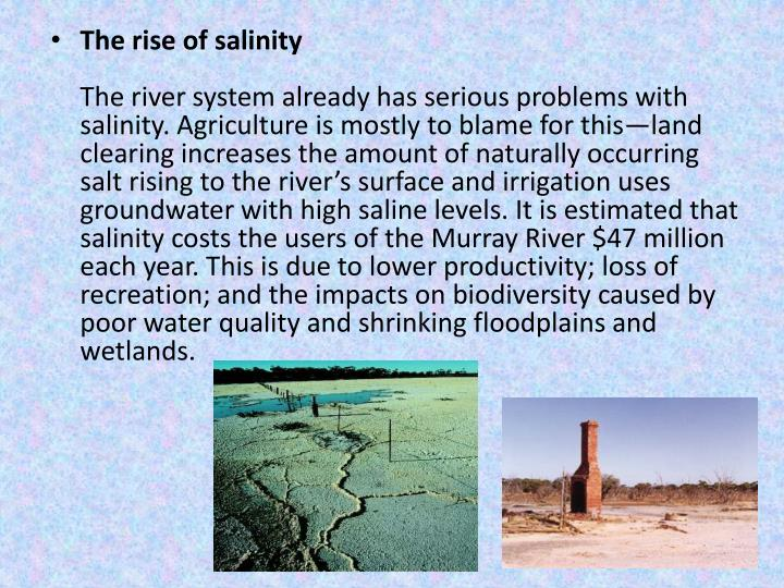 The rise of salinity