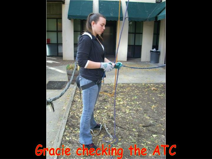 Gracie checking the ATC