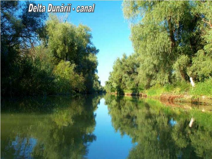 Delta Dunării - canal