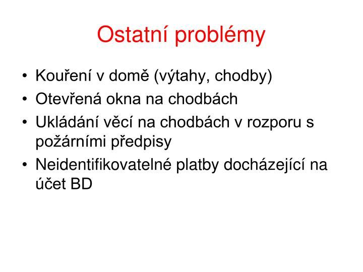 Ostatní problémy