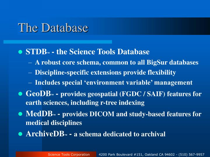 The Database