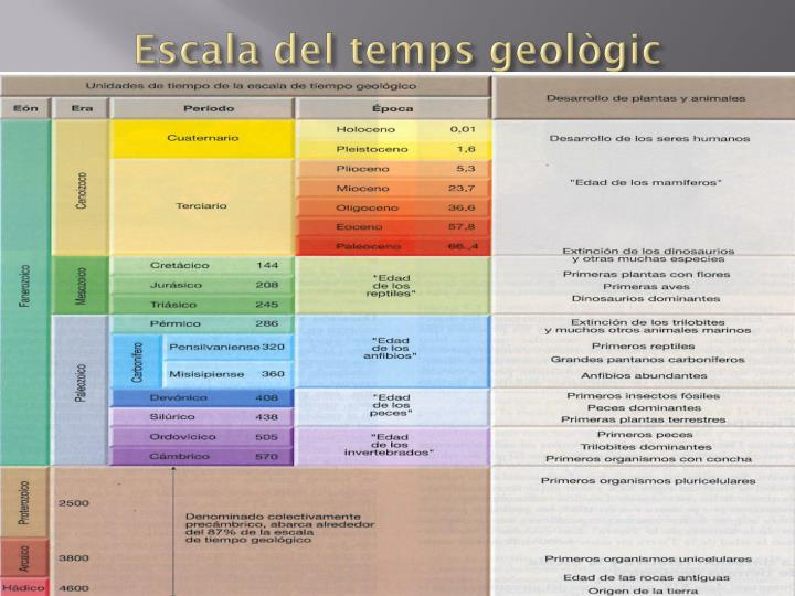 Escala del temps geològic