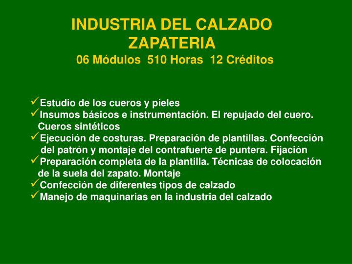 INDUSTRIA DEL CALZADO  ZAPATERIA