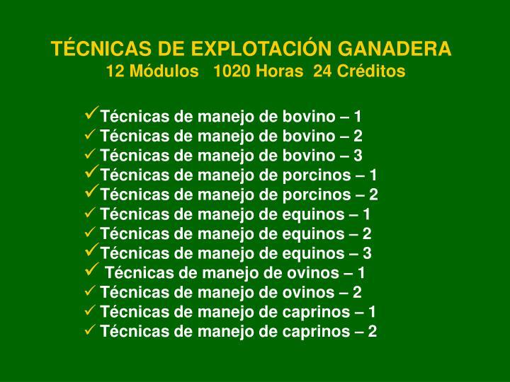 TÉCNICAS DE EXPLOTACIÓN GANADERA