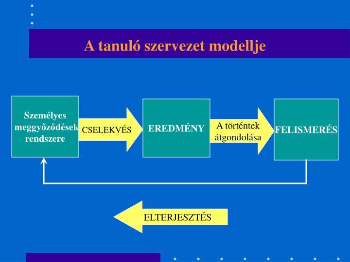 A tanuló szervezet modellje