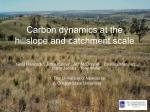 carbon dynamics at the hillslope and catchment scale