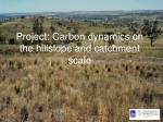 project carbon dynamics on the hillslope and catchment scale