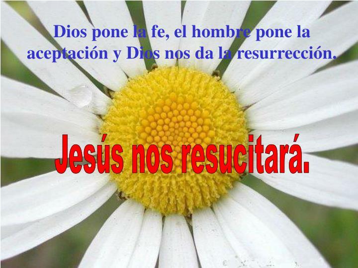 Dios pone la fe, el hombre pone la aceptación y Dios nos da la resurrección.