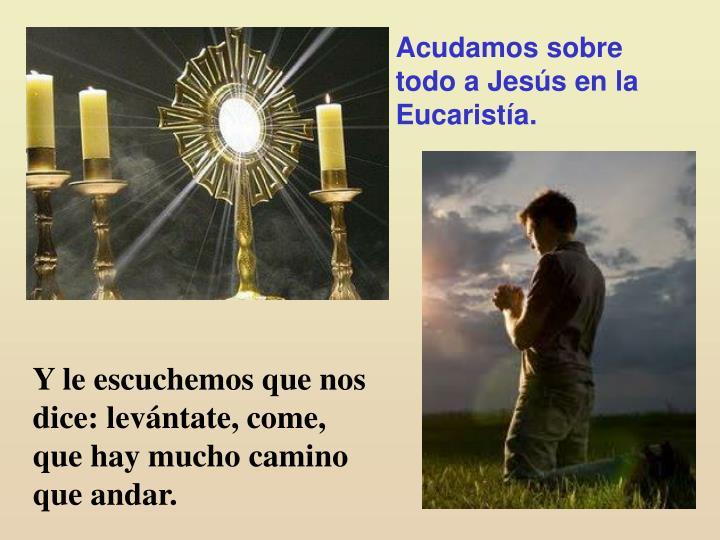 Acudamos sobre todo a Jesús en la Eucaristía.