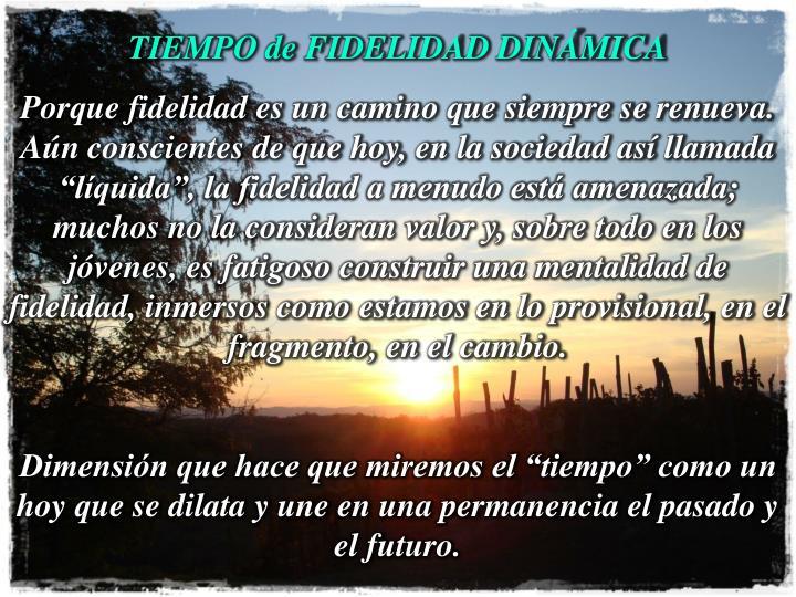 TIEMPO de FIDELIDAD DINÁMICA