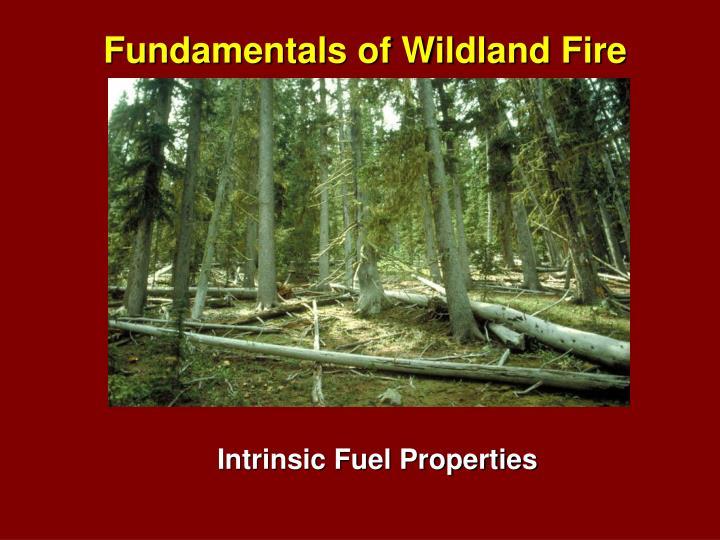 Fundamentals of Wildland Fire