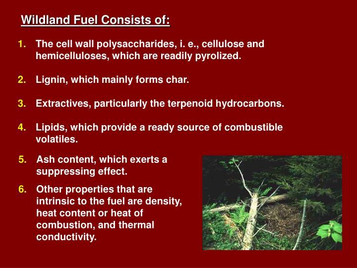 Wildland Fuel Consists of:
