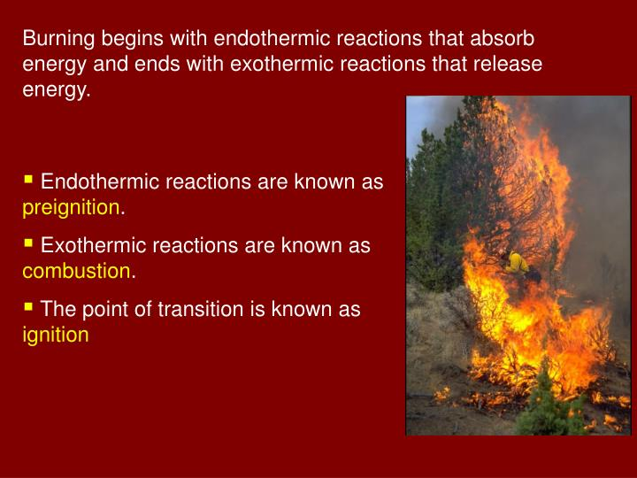 Burning begins with endothermic reactions that absorb energy and ends with exothermic reactions that release energy.