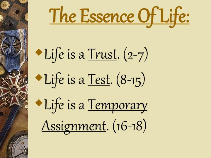 The Essence Of Life: