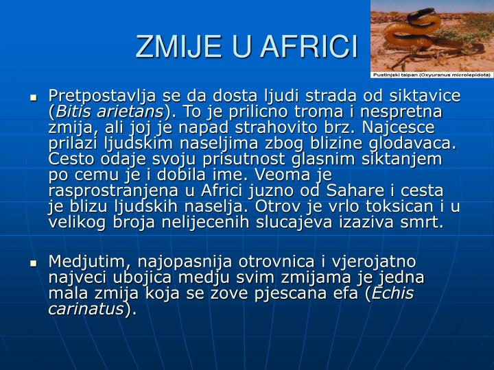 ZMIJE U AFRICI