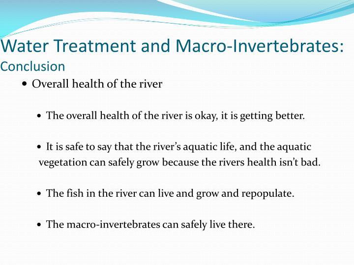 Water Treatment and Macro-Invertebrates:
