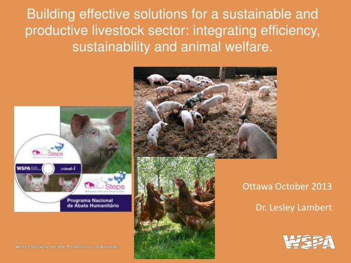 Building effective solutions for a sustainable and productive livestock sector: