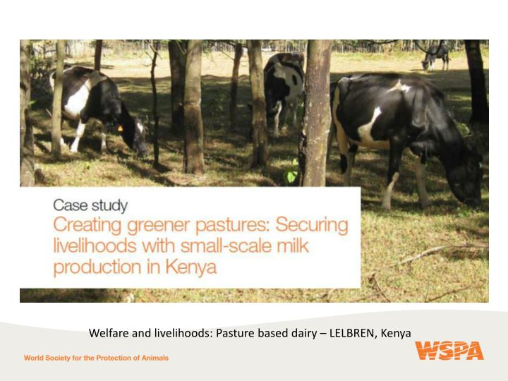 Welfare and livelihoods: Pasture