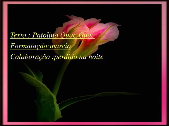 Texto : Patolino Quac Quac