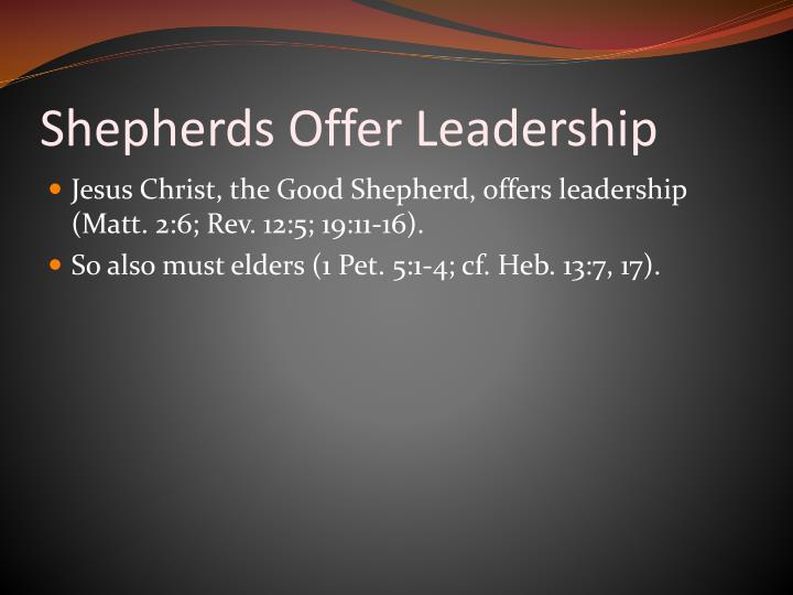 Shepherds Offer Leadership