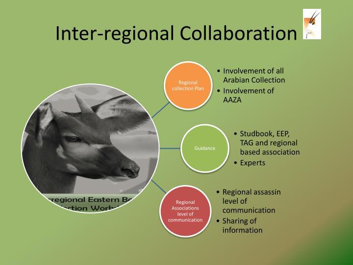 Inter-regional Collaboration