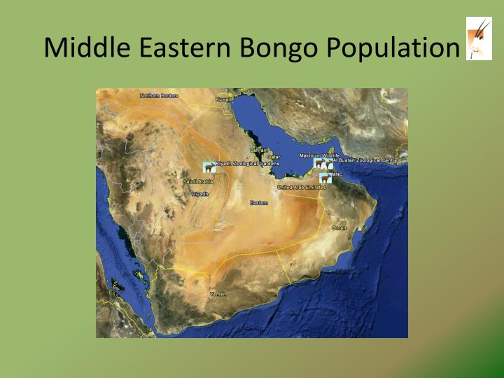 Middle Eastern Bongo Population