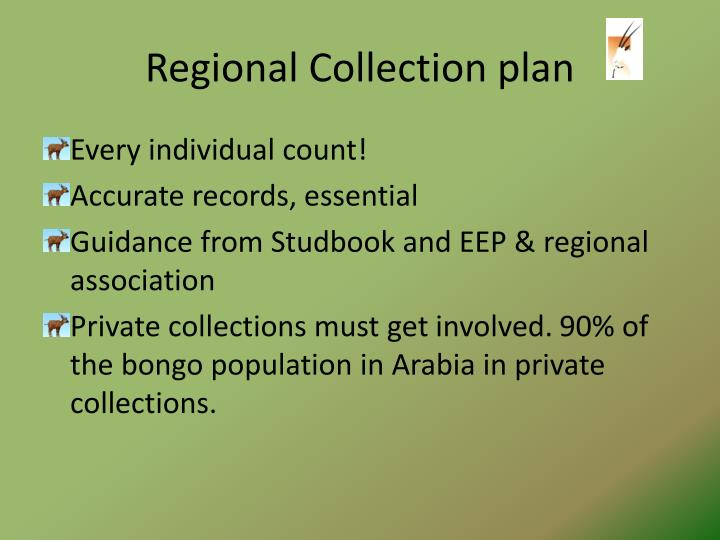Regional Collection plan