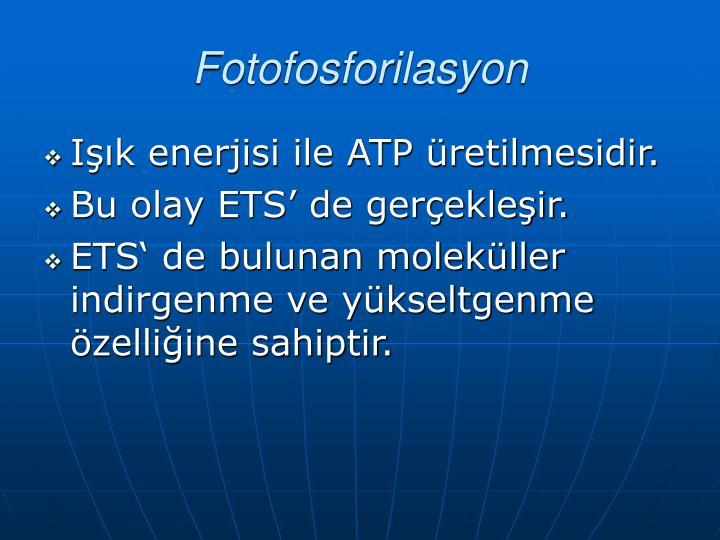 Fotofosforilasyon