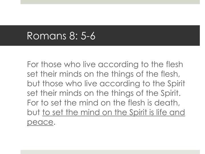 Romans 8: 5-6