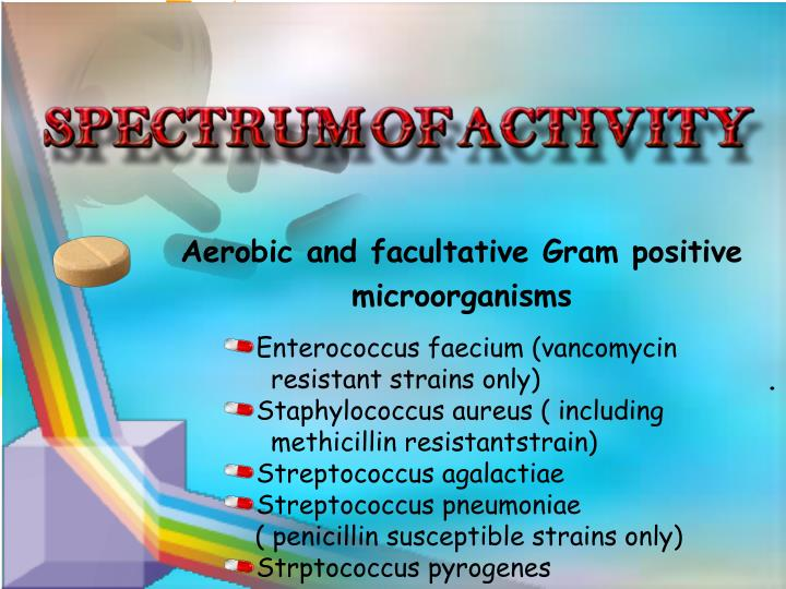 Aerobic and facultative Gram positive