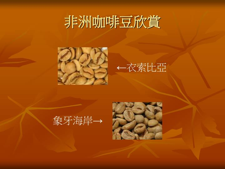 非洲咖啡豆欣賞