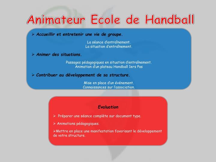 Animateur Ecole de Handball