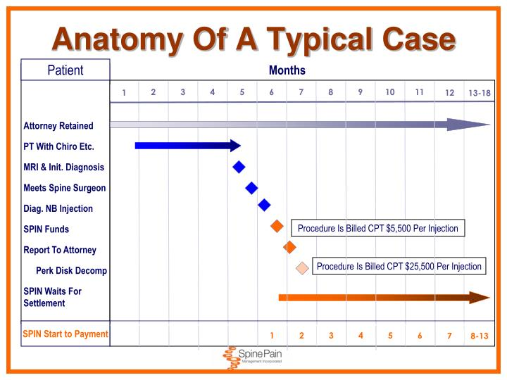 Anatomy Of A Typical Case