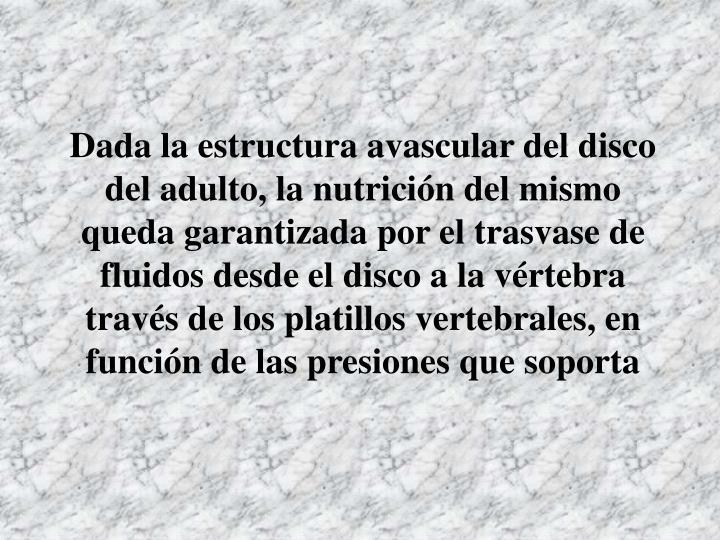 Dada la estructura avascular del disco del adulto, la nutrición del mismo queda garantizada por el trasvase de fluidos desde el disco a la vértebra través de los platillos vertebrales, en función de las presiones que soporta
