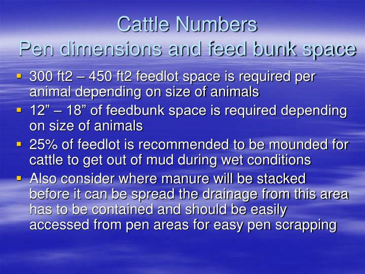Cattle Numbers