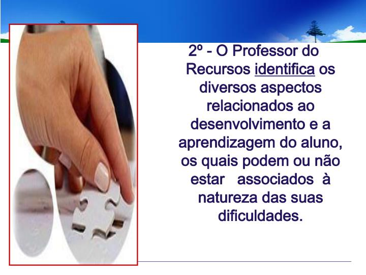 2º - O Professor do
