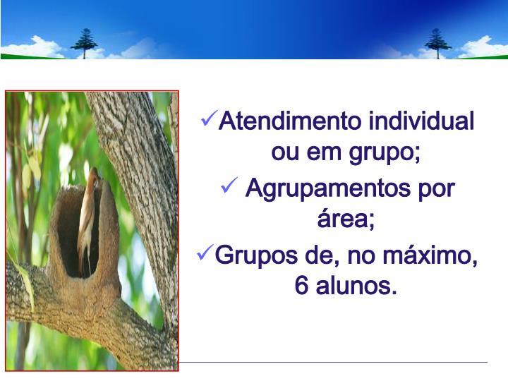 Atendimento individual ou em grupo;
